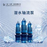 大流量轴流泵-天津潜水泵厂家