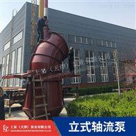 机泵一体式排水ZLB立式潜水轴流泵选型型号