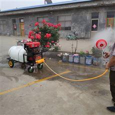 SL  DYJ大棚菜地打药机手推汽油喷雾器