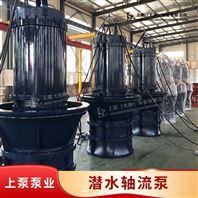 防汛大流量卧式安装QZ潜水轴流泵型号参数