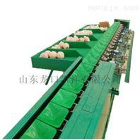 供应四川丑橘分选机厂家直销质保可靠