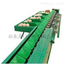 XGJ-SZ-1供应四川丑橘分选机*质保可靠