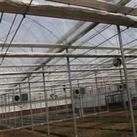 无土基质栽培 连栋薄膜温室 花卉种植大棚