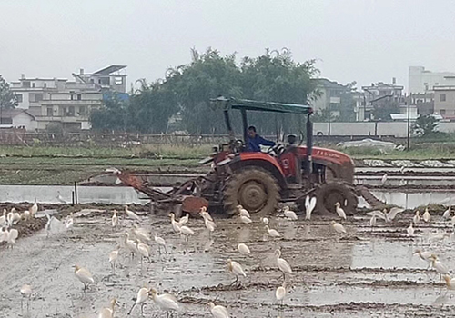 北京地区这些拖拉机、联合收割机车主注意了!该来安检了!