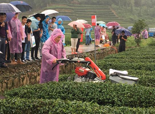 2020年福建茶叶生产全程机械化现场观摩活动在武夷山市举行