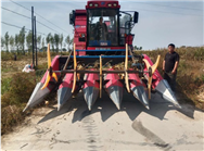 吉林省农业农村厅关于对受灾农作物收获机械省级补贴产品信息的通告