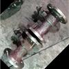 Q41M-25C快速排污球阀